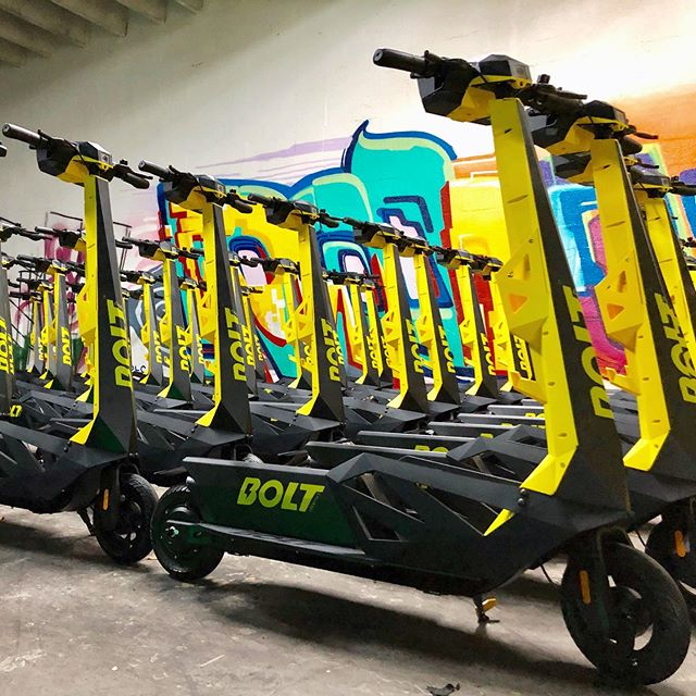 lots of Bolt electric scooters